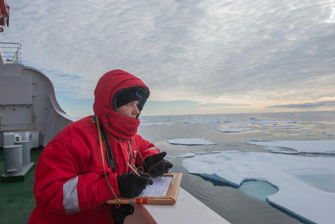 """Auf der """"Polarstern"""" Richtung Spitzbergen: Wenn Eltern auf Forschungsreise gehen, muss die Familie sicher versorgt sein. Bild: AWI"""