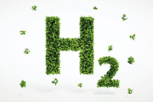 Die Buchstaben H2 aus Blättern gefertigt